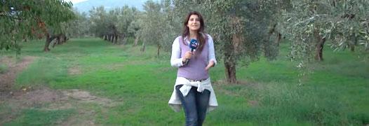 Eccellenze di Calabria