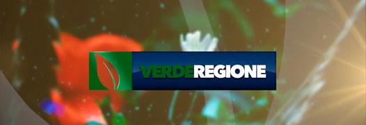 Verde Regione
