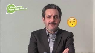 13-02-2017-il-whatsapp-di-francesco-mollo