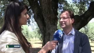 verde-regione-puntata-del-20-05-2015