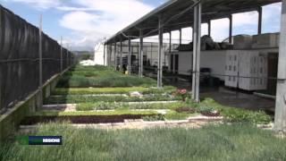 verde-regione-puntata-del-13-05-2015