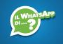 miniatura-il-whatsapp-di